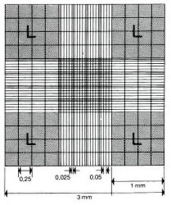 Slika za komorica za brojanje stanica po neubaueru dupla