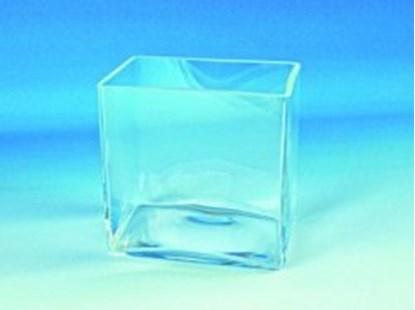 Slika za Aquaria, clear glass
