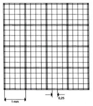 Slika za Counting chamber, Fuchs-Rosenthal