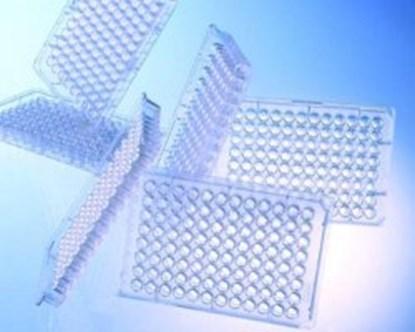 Slika za mikrotitar ploče ps 96 udubljenja ravno dno nesterilne bistre kodirane pk/100