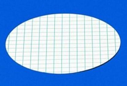 Slika za membranski filter cn 0,45um fi 47mm pk/100 sterilni