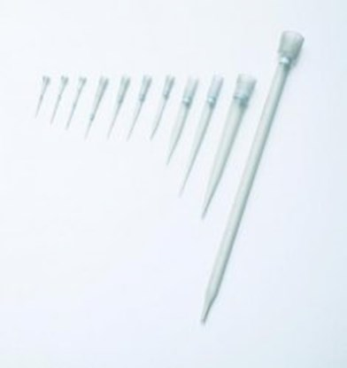 Slika za nastavci filter za pipetu 50-1250ul 103mm sterilni u stalku pk/5x96