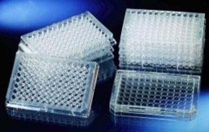 Slika za mikrotitar ploče ps 96 udubljenja ravno dno nesterilne bistre tretirane pk/60