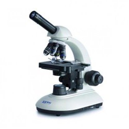 Slika za compound microscope. 4/10/40/100. wf10x1