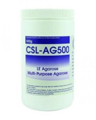 Slika za Agarose for gel electrophoresis